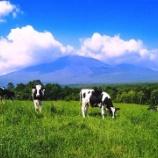 『【株式投資】あなたは酪農派?畜産派?』の画像