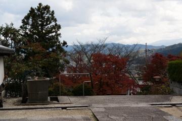 九品寺と一言神社の紅葉【2017】