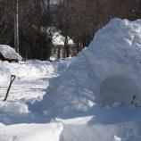 『雪掘りの日々・豪雪と天ぷら』の画像