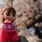 新しい家族はお人形~リンキーココ~