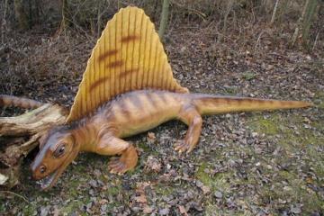 単弓類・哺乳類型爬虫類について