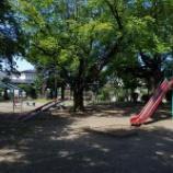 『東大和第一光ヶ丘公園の彼岸花と近隣の花』の画像
