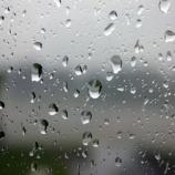 『雨・・ですが上棟です』の画像
