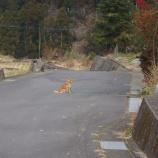 『2012.01.07  五家原岳(ナンパしようにも人がいない)』の画像