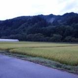 『飛騨高山のSWING 2013』の画像