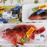 『国東の食環境(325)3パックで1000円』の画像