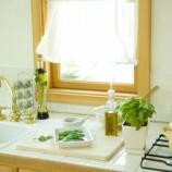 『初心者さんでも大丈夫!残り野菜で作る「キッチン菜園」で楽しく節約しよう☆ 1/2』の画像
