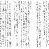 『実物資料集73 駿府城の石垣』の画像