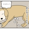 エフ漫画『高級な的』