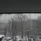 『比婆山 スノーハイク』の画像