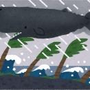 【速報】台風第13号「クジラ」が発生しました