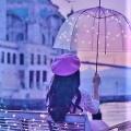Highlight Scene~ひとつづきの愛を見つめたあの夜