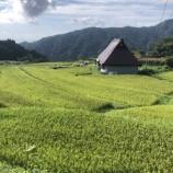 『そろそろ稲刈りの準備を始めます』の画像