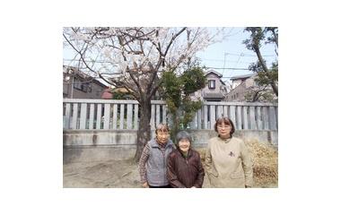『彩の家デイサービスのお花見』の画像