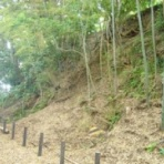 静岡県の遺跡・古墳・城跡ガイド