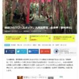 『鹿児島県・佐多岬「御崎神社」』の画像