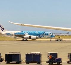 2021夏休みのハワイ 日本の航空会社がそれでもいろいろやってくれています。 行きたいなぁ・・・。