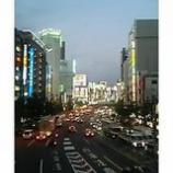 『歌舞伎町を臨む』の画像
