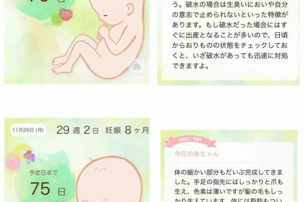 出血 ヶ月 妊娠 8