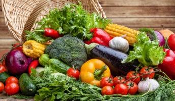 生野菜から感染? 人の脳に侵入する「恐怖の寄生虫」とは