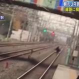 『【冤罪?】JR武蔵野線東浦和駅の線路に痴漢が逃げ込む様子が撮影される』の画像