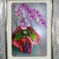 友達に戴いた胡蝶蘭をNSBにしました…