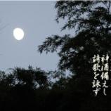 『芋名月』の画像
