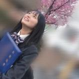 『流石、乃木ヲタしーちゃんが撮った写真は一味違うぜww【乃木坂46】』の画像