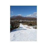 『インターアルペン 軽井沢初滑りスキーキャンプ参加者募集』の画像
