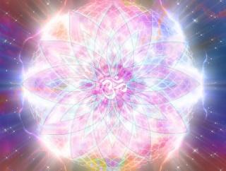 多次元(1) :本能的な精神