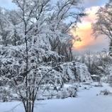 『冬至明けの朝は雪景色』の画像