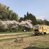 『桜の名所を訪ねて2018・秋月編』の画像