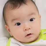 『日曜日の朝(8)シラタマ・チベ・1年生(1)』の画像