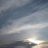 『淡い 朝』の画像