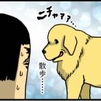 犬は常に人間の行動を監視しているのだ