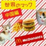 『【世界のマック】を食べてみよう!【中国・その他編】』の画像