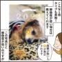 「スマホで写真年賀状アプリ」使ってみた!【PR】