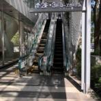 カシミアニットブランド naoco's blog naoco's   ~day by day~