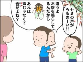 セミの声が聞こえるのは日本人だから!?