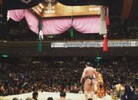 【速報】たなみん、オカロ、優子で相撲観戦www テレビにも映っていた模様