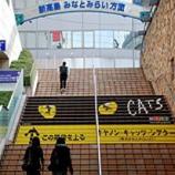 『CATS横浜』の画像