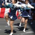 第17回湘南台ファンタジア2015 その17(慶應義塾大学チアリーディングサークル・メルフィルズ)