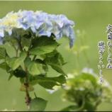 『あぢさゐ』の画像