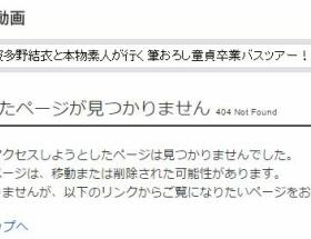 アイドル刺傷事件岩崎容疑者が出演していたAVが削除 波多野結衣も困惑