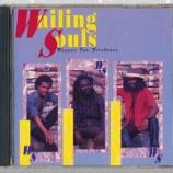 『Wailing Souls「Reggae Ina Firehouse」』の画像