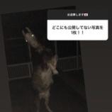 『【乃木坂46】与田ちゃん・・・この写真は流石に怖すぎる・・・』の画像