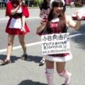 2014年横浜開港記念みなと祭国際仮装行列第62回ザよこはまパレード その32(ヨコハマカワイイパレード)の11(小日向由衣)