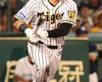 【悲報】阪神のナバーロさん(33)、もうダメそう