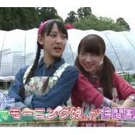 Yahooニュースに「さんまとモー娘メンバーの三角関係」wwwwww アイドルファンマスター
