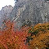 『日向神ハナタテ岩、道端エリア』の画像